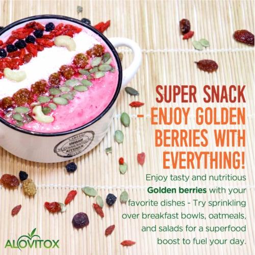 Certified Organic Sun Dried Golden Berries 8 oz | Raw, Vegan, Gluten Free Super Snack Perspective: left
