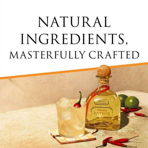 Patron Reposado Tequila Perspective: left
