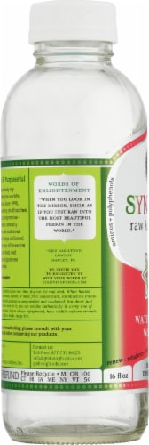 GT's Living Foods Synergy Organic Watermelon Wonder Kombucha Perspective: left