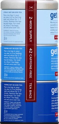 The Republic of Tea Get Clean Tea Bags Perspective: left