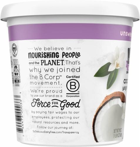 SO Delicious Dairy Free Unsweetened Vanilla Coconutmilk Yogurt Alternative Perspective: left
