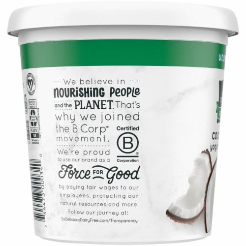 SO Delicious Dairy Free Unsweetened Coconutmilk Yogurt Alternative Perspective: left