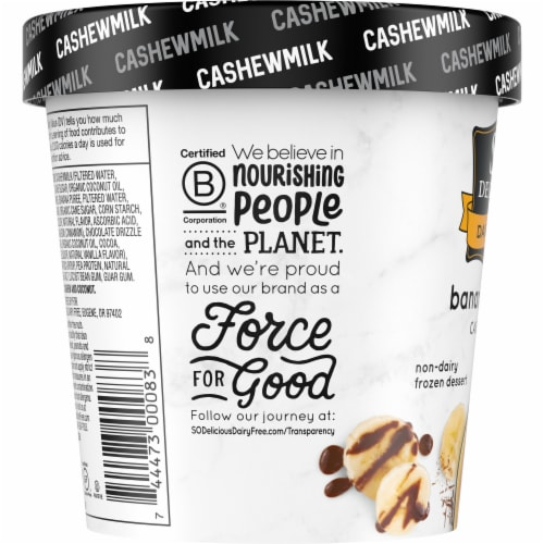 SO Delicious Dairy Free Bananas Foster Cashewmilk Frozen Dessert Perspective: left