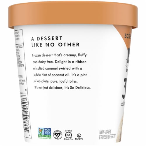 SO Delicious Dairy Free Salted Caramel Frozen Dessert Perspective: left