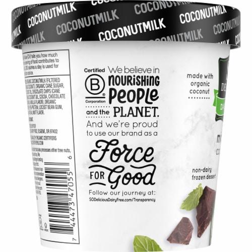 SO Delicious Mint Chip Coconutmilk Non-Dairy Frozen Dessert Perspective: left