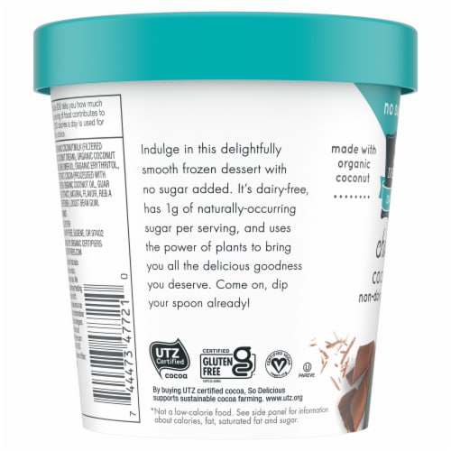 SO Delicious Dairy Free Chocolate Coconutmilk Frozen Dessert Perspective: left