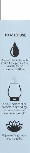 Chesapeake Bay Calmness Geranium Vetiver & Grapefruit Essential Oil Perspective: left