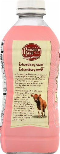 Promised Land Dairy Very Berry Strawberry Whole Milk Perspective: left