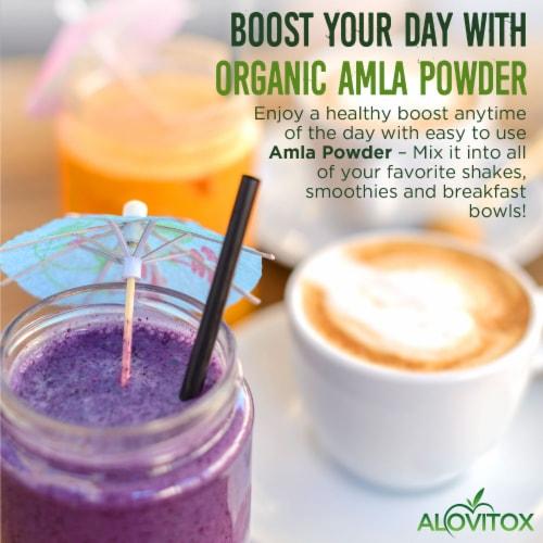 Certified Organic Amla Powder 16oz by Alovitox - Rich in Antioxidants, Smoothie Powder Mix Perspective: left