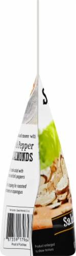 Fresh Gourmet Sea Salt & Cracked Pepper Sliced Almonds Salad Topping Perspective: left