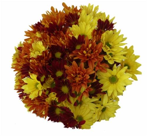 Jumbo Poms Assorted Bouquet Perspective: left
