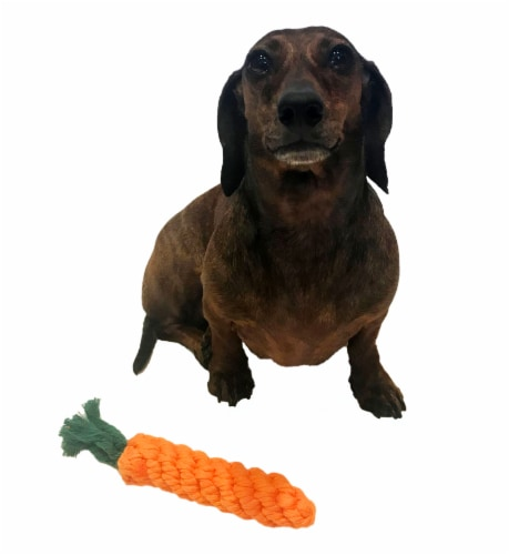 Midlee 1-Pack Rope Carrot Easter Dog Toys Perspective: left
