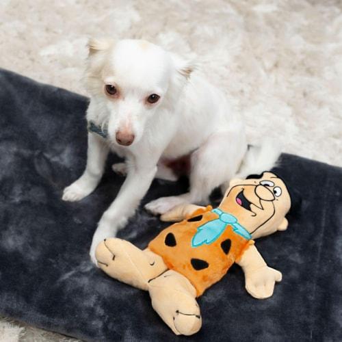 "The Flintstones Fred Flintstone 12"" Plush Dog Toy Perspective: left"