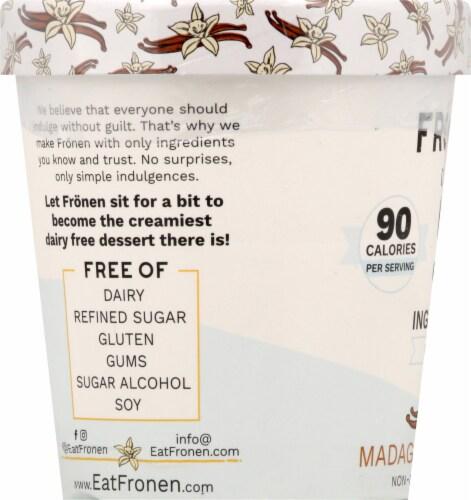 Fronen Madagascar Vanilla Non-Dairy Frozen Dessert Perspective: left