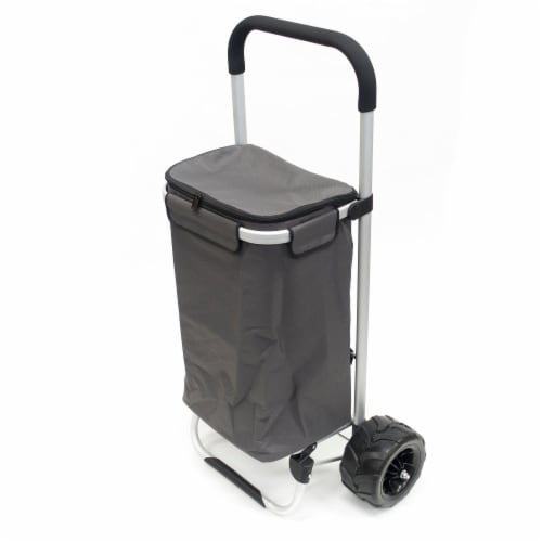 Creative Outdoor EZ Push 40L Folding Sport Trolley - Gray Perspective: left