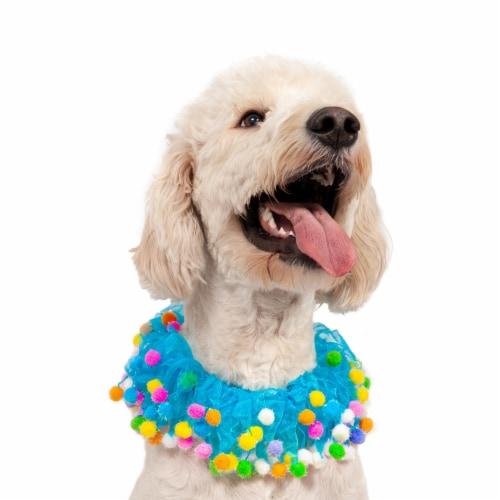 Midlee Blue Birthday Pom Pom Dog Collar (Medium) Perspective: left