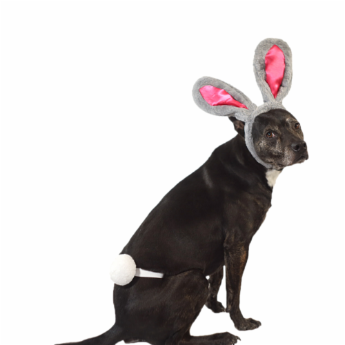 Midlee Easter Bunny Gray & Pink Rabbit Ears for Large Dogs Headband With Tail Perspective: left
