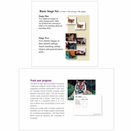 Stages Learning Materials Language Builder Picture Nouns Cards Set Perspective: left