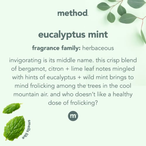 Method Eucalyptus Mint Shower Cleaner Perspective: left