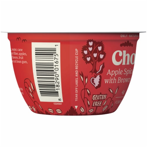 Chobani Apple Spice with Brown Sugar Oatmeal Greek Yogurt Perspective: left
