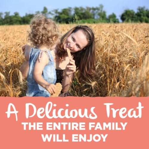 Back to Nature Pink Himalayan Salt Multigrain Flatbread Crackers Perspective: left