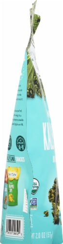 Rhythm Organic Kool Ranch Kale Chips Perspective: left