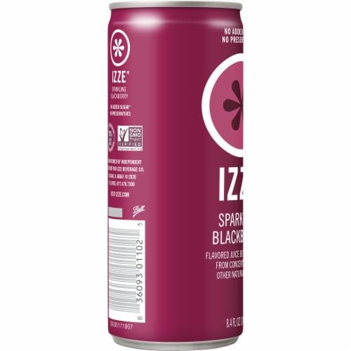 IZZE Sparkling Juice Beverage Blackberry Flavored Juice Drink Perspective: left