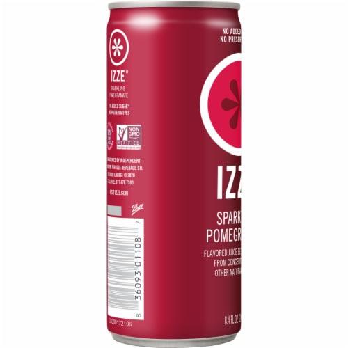 IZZE Sparkling Juice Pomegranate Flavored Juice Drink Perspective: left