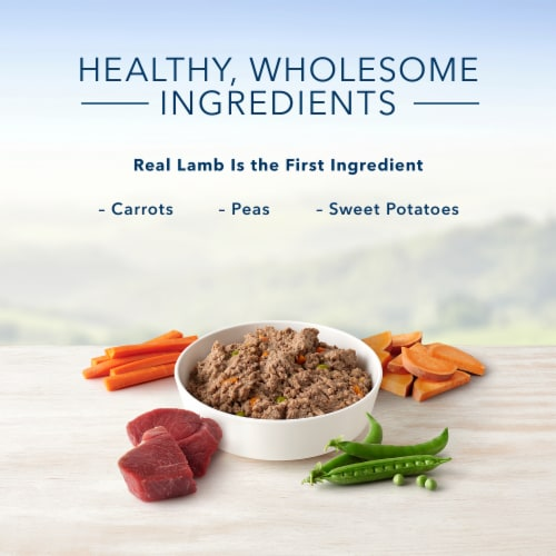 Blue Buffalo Lamb Dinner Homestyle Recipe Natural Dog Food Perspective: left
