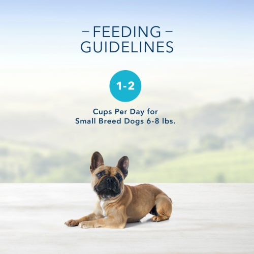 Blue Buffalo Delights Grilled Chicken Flavor Pate Small Breed Dog Food Perspective: left