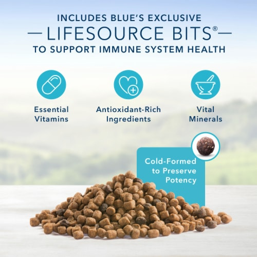 Blue Buffalo Healthy Living Chicken & Brown Rice Adult Dry Cat Food Perspective: left