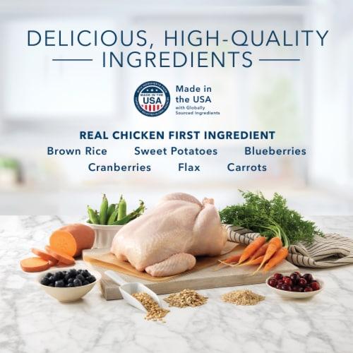 Blue Buffalo Indoor Health Adult Cat Food Chicken & Brown Rice Perspective: left