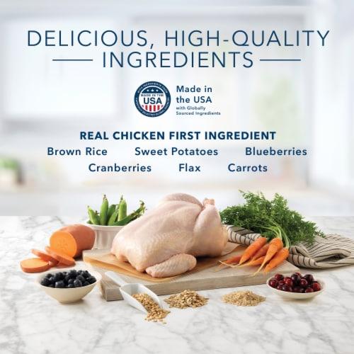 Blue Buffalo Chicken & Brown Rice Recipe Indoor Health Adult Cat Food Perspective: left