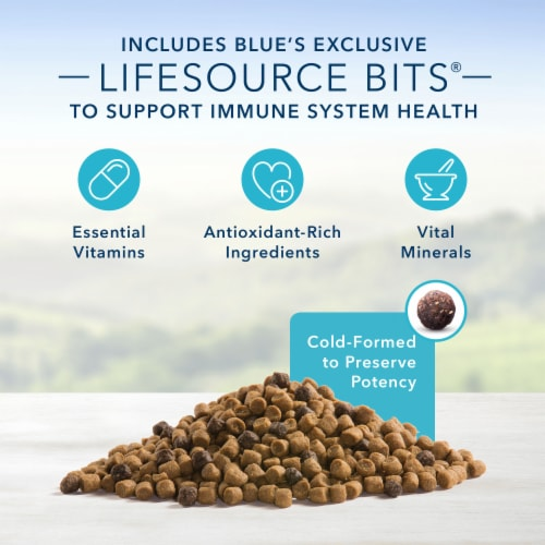 Blue Buffalo Healthy Growth Chicken & Brown Rice Dry Kitten Food Perspective: left