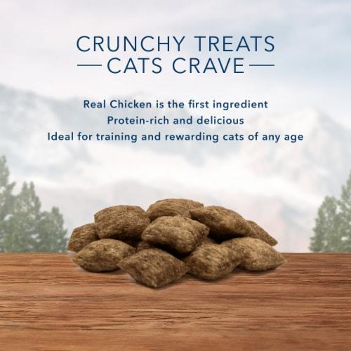 Blue Buffalo Wilderness Tasty Chicken Flavor Crunchy Cat Treats Perspective: left
