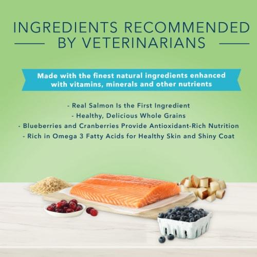Blue Buffalo True Solutions Perfect Coat Salmon Skin & Coat Care Formula Adult Dry Dog Food Perspective: left