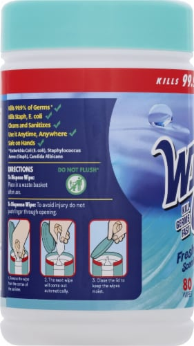 Wipe Out! Antibacterial Fresh Wipes 80 Count Perspective: left