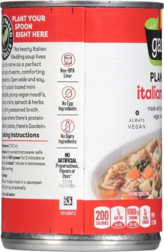 Gardein Vegan Plant-Based Meatball Italian Wedding Soup Perspective: left