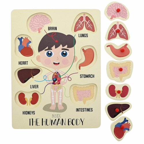2-Pack Educational Wood Peg Puzzle, My Human Body, Inside and Outside Parts, 12 x 9 Inches Perspective: left