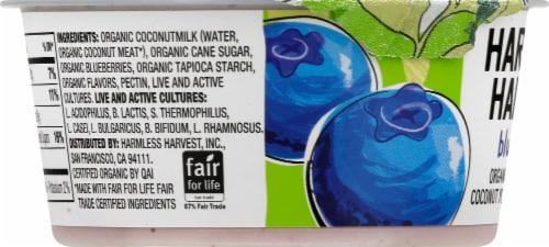 Harmless Harvest Organic Dairy-Free Blueberry Yogurt Alternative Perspective: left