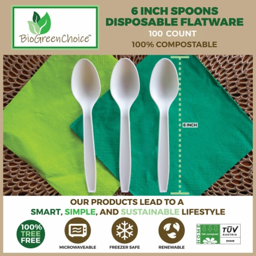 """6"""" Eco-Friendly Disposable Cutlery Spoons (100 Count) Perspective: left"""