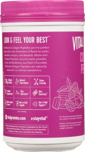 Vital Proteins  Collagen Peptides   Dark Chocolate & Blackberry Perspective: left