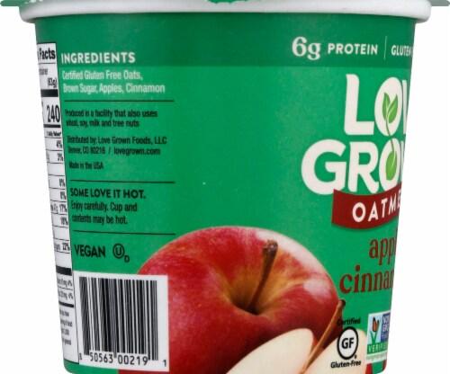 Love Grown Apple Cinnamon Hot Oats Perspective: left