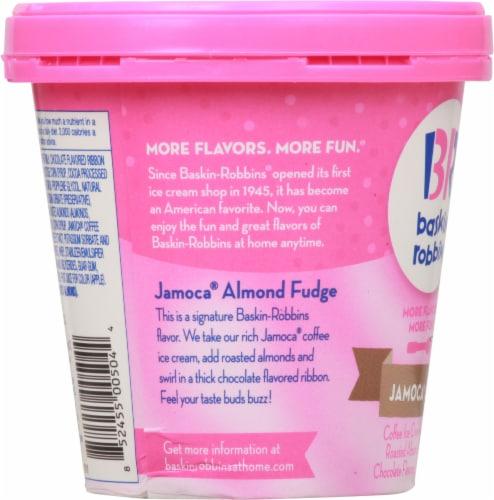 Baskin Robbins Jamocha Almond Fudge Ice Cream Perspective: left