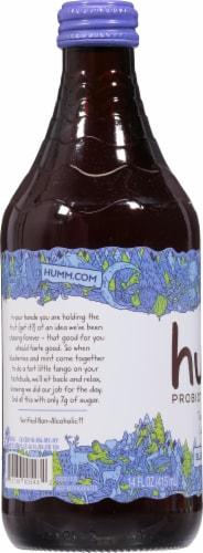 Humm Blueberry Mint Kombucha Perspective: left