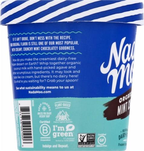 Nadamoo Lotta Mint Chip Dairy-Free Frozen Dessert Perspective: left