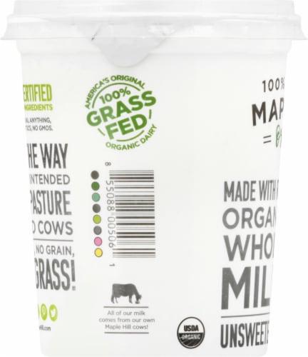 Maple Hill Creamery Organic 100% Grass-Fed Whole Milk Plain Yogurt Perspective: left