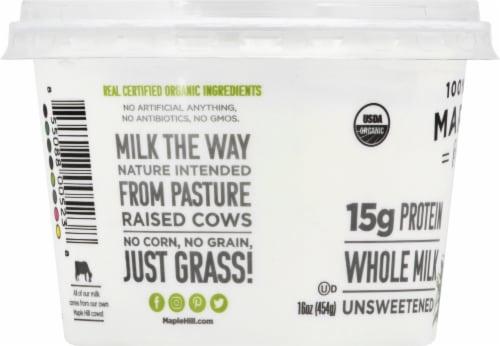 Maple Hill Creamery Organic 100% Grass-Fed Whole Milk Plain Greek Yogurt Perspective: left