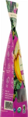 Wild Joy Banana Jerky Ginger Teriyaki Marinated Banana Slices Perspective: left