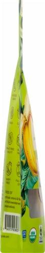 Wild Joy Banana Jerky Chipotle Lime Marinated Banana Slices Perspective: left